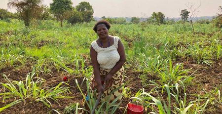 Leading Women Trailblazing Small-Scale Farming