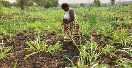 Leading Women Trailblazing Small-Scale Farming – An Untapped Resource